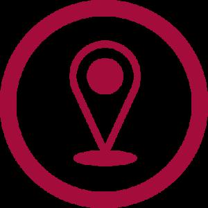 pin-icon